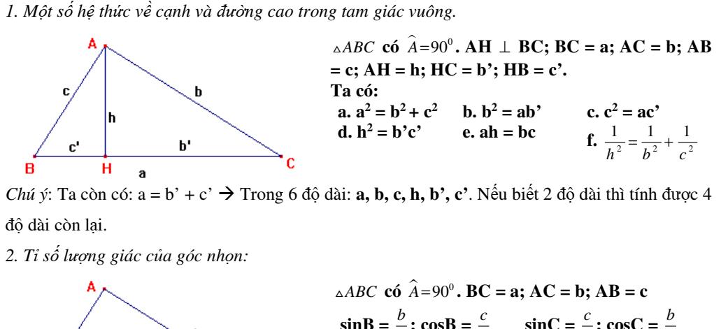 Hệ thức lượng trong tam giác vuông- Hình học 9- Chương 1