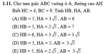 Bai-tap-trac-nghiem-He thuc luong trong tam giac vuong-HH9-Chuong-1-FULL-DAP-AN